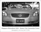 SMS2004-13.jpg