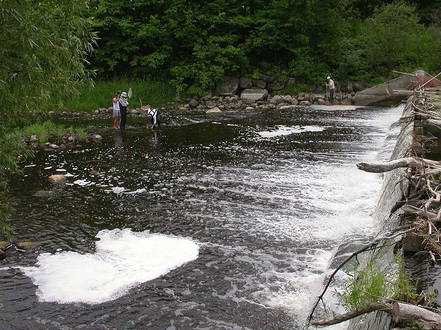 downstream at Hearts Desire dam on Jock River