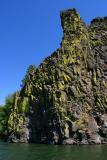 Basalt and Lichen