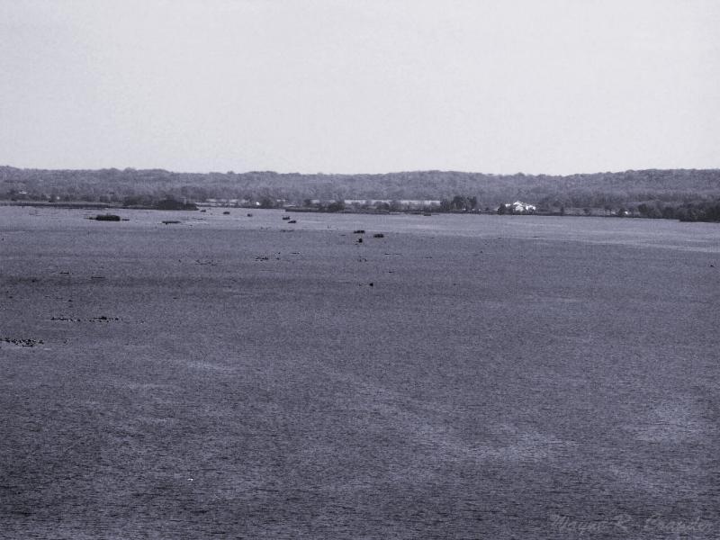 The Illinois River 2.jpg