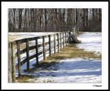 3/10/05 - Snow & Fenceds20050306_0020a1wF Fence.jpg