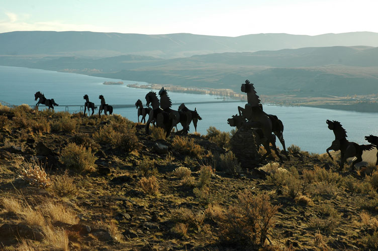 Horses with Columbia in Background