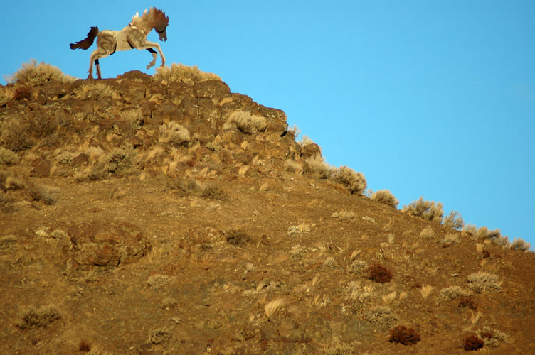 Horse Atop Hill