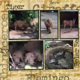 Knoxville Zoo  (page 2 of 6)