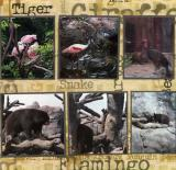 Knoxville Zoo  (page 6 of 6)