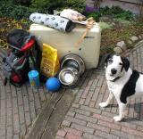 Joop's Dog Log - Friday July 02
