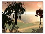 Arabian Dawn