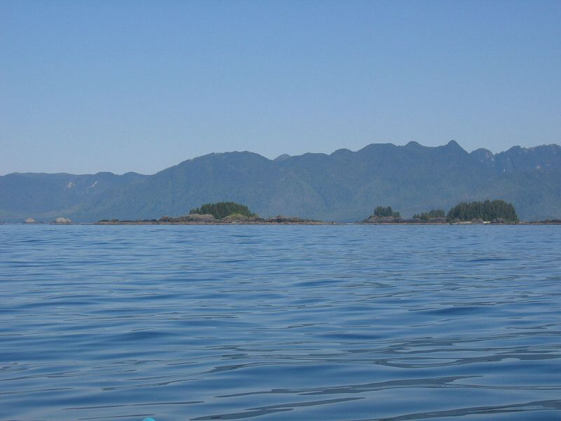 Cuttle Islets and Brooks Peninsula