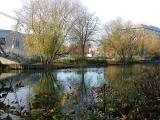 River Medway (240)