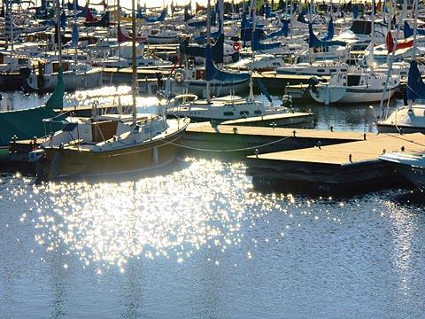 Nepean Sailing Club Marina