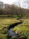 et au milieu serpente un ruisseau......