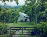 Barn with Horses, Townsend, Tennessee