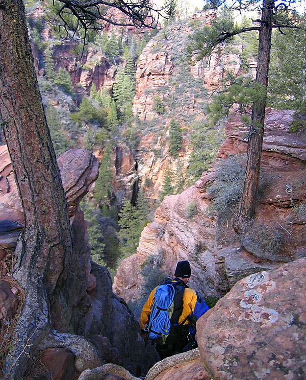 Zion National Park 2004