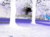 Northern exposure.jpg(559)