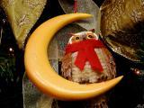 Owl on the Moon.jpg(236)