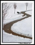 Snow Path - Dec 1