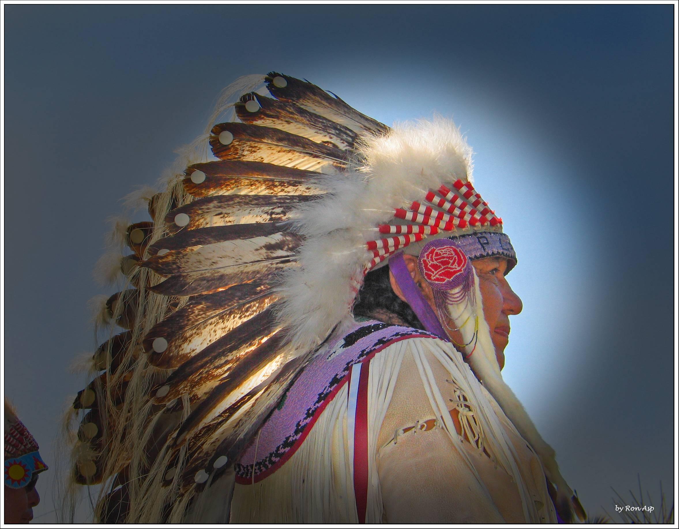 Hobbema Chief