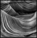 wave 2crop.jpg