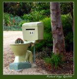 Toilet mail box