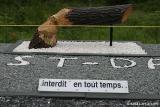 Avis aux castors / Beaver warning?