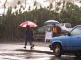 Hilo rain
