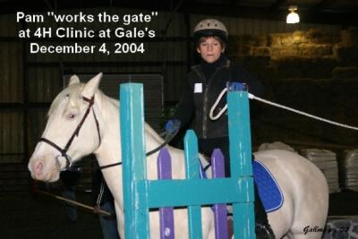 Pam & Lil Work the Gate.JPG