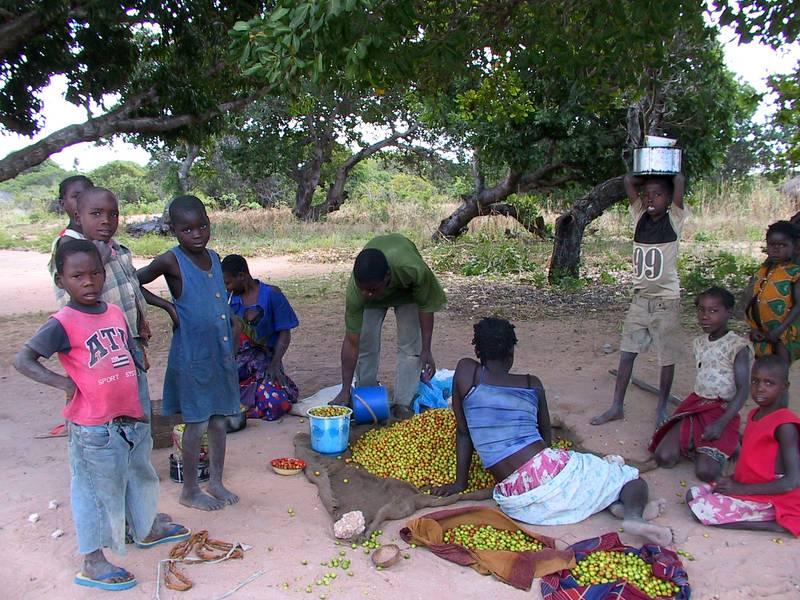 Woman selling masinika fruit