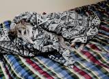 Snug as a Grey in a rug