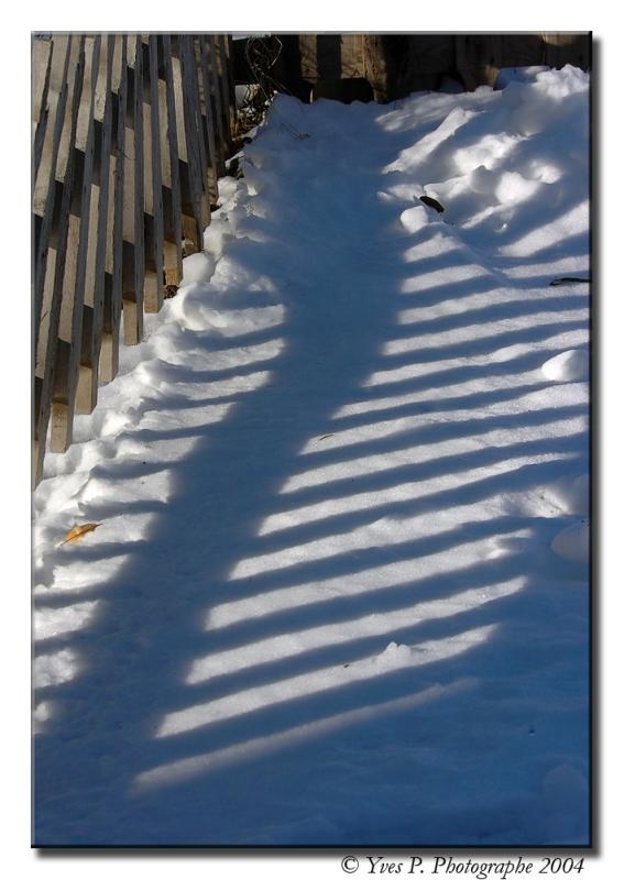 The Shadows ...