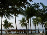 Along Pattaya