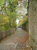 Way to the Schloss DSC03600.jpg