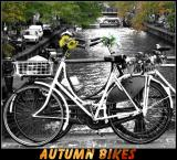 Autumn Bikes