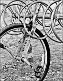 The Unicycle(03.17.05)
