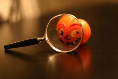 Close-up Photography *