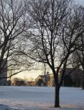 Morning Campus