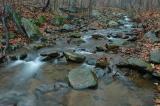 11/20/04 - Mountain Stream
