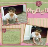 Crawl pg1
