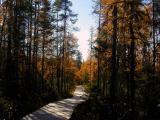 boreal1-1024_Image040_p.jpg
