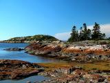 Rusty Shore