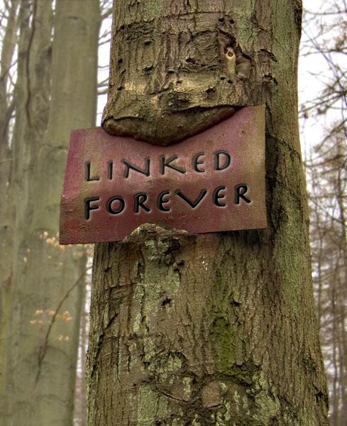 Linked Forever