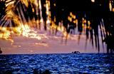 Rangiroa Island Sunset copy.jpg
