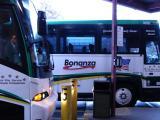 The bus trip