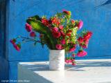 fred flowers blue wall, san lucas toliman, guatemala