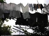 laundry, san lucas toliman, guatemala