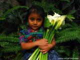 baby with callas, antigua, guatemala