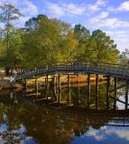 Twin Lakes Foot Bridge1