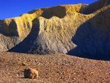 Rock Near Ash Strata