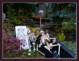 One Spooky House #10