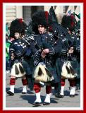 Mixed Gender Bagpipers Sporting Knit Red Plaid Stockings and Ankle Supports