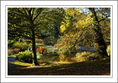 Stourhead ~ between the lakes